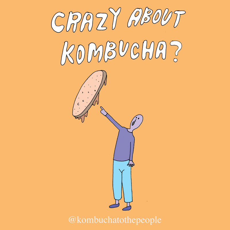 kombucha illustration art that says crazy about kombucha with person pointing at a scoby with their mouth open