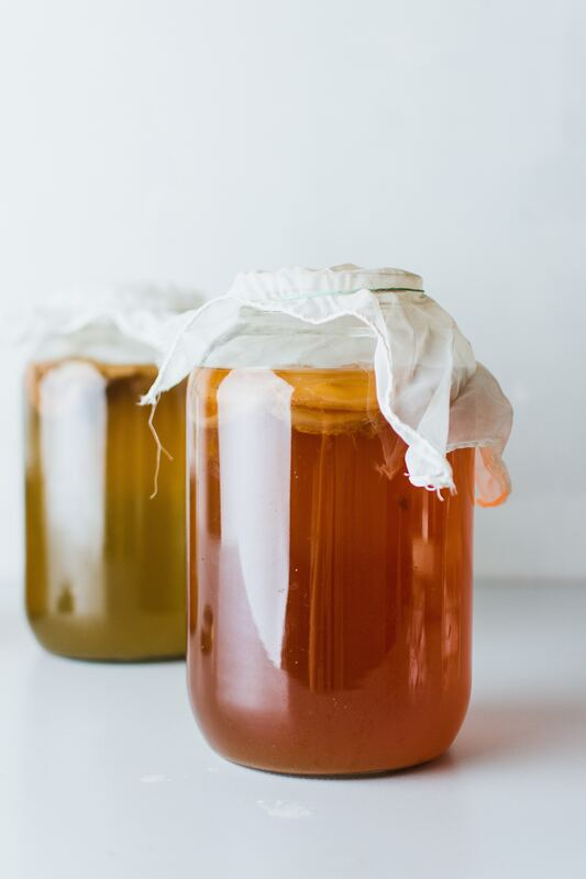 two jars of kombucha with kombucha scobys